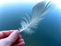 Feather. Hand holding a feather above the water Royalty Free Stock Images