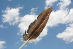 Feather. With sky and cloud background Royalty Free Stock Images