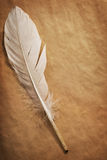 Feather on a background of the empty form for the letter Stock Photos
