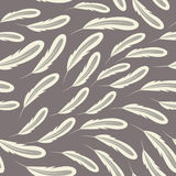 Feather Background. A soft feather seamless pattern in tones of grey Royalty Free Stock Image