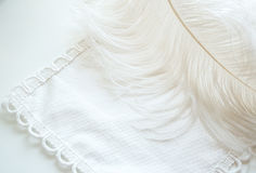 Feather background Stock Photography
