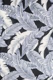 Feather background. Background feather white black easter plumage feathery horizontal nature secure light eiderdown down barb soft comforter blurred plume many Stock Photography