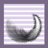 Feather bird painted with a brush on a striped background Stock Photos