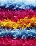 Colourful feather boas stock images