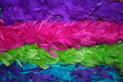 Feather boas. Colorful feather boas ,blue,pink,purple and green Stock Image