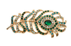 Free Feather Brooch With Stones Stock Photos - 49247733
