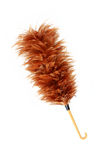 feather broom stick isolated on white royalty free stock photo