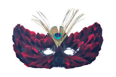 Feather cat mask. Separated on white background royalty free stock photos
