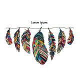 Feather collection for your design Royalty Free Stock Photos