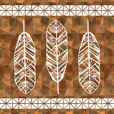 Feather decoration Stock Photography