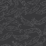 Feather doodle pattern. It consists of feathers with different shape. Grey background. Achieved with doodle contour Stock Photo