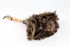 Feather duster against white background Royalty Free Stock Photography