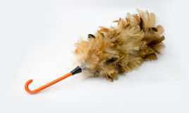 Feather duster, feather broom isolated on white stock photos