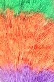 Feather duster macro. Synthetic feather duster macro background stock photos