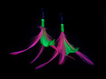 Feather earrings. (fluor color) isolated on black background Stock Images