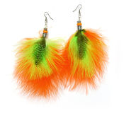 Feather earrings Stock Photo