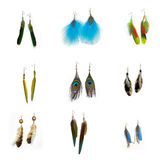 Feather earrings. (parrot, pintado) isolated on white background Royalty Free Stock Photo