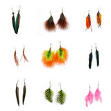 Feather earrings. (parrot, pintado) isolated on white background Royalty Free Stock Photos