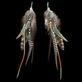 Feather earrings Royalty Free Stock Photos