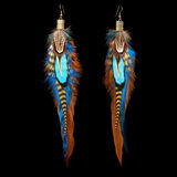 Feather earrings Stock Image