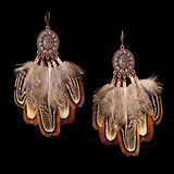 Feather earrings Royalty Free Stock Photo