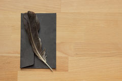 Feather and envelope Stock Photos