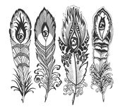 Feather with eye Royalty Free Stock Photos