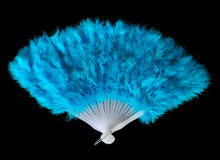 Feather fan. Beautiful blue feather fan isolated on black background Royalty Free Stock Images