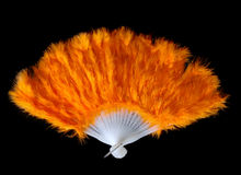 Feather fan. Beautiful orange feather fan isolated on black background Stock Photography