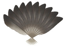 Feather fan. Royalty Free Stock Photography