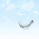Feather flying in sky. Feather falling down from a blue, cloudy sky Stock Photo