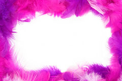 Feather frame Stock Photos