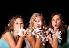 Feather girls Stock Photography