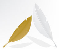 Feather gold and white Royalty Free Stock Image