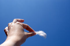 Feather and hand. Hand (body part) holding a feather Stock Image