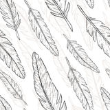 Feather hand drawn pattern. Feather pattern. Vector illustration royalty free illustration