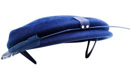 Feather on hat Stock Image