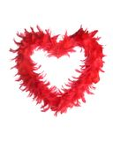 Feather Heart. A red heart made entirely of feathers against a white background royalty free stock photography
