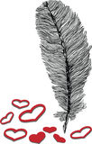 Feather and heart illustration. Black and white feather illustration with red hearts Stock Photos