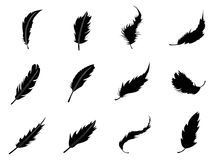 Feather icons set. Isolated feather Silhouettes from white background Stock Photography