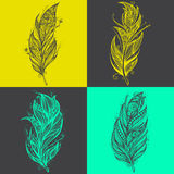Feather icons. Set of logo design vector templates Stock Image