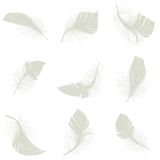 Feather Icons Set. White bird wing feather decorative icons set isolated vector illustration Royalty Free Stock Photography