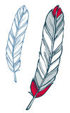 Feather illustration. Red and blue feather hand-drawn sketch illustration Royalty Free Stock Images