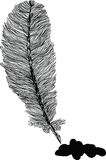 Feather illustration. Black and white feather illustration with ink spot Royalty Free Stock Photography