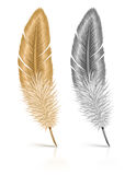 Feather isolated on white background Royalty Free Stock Images
