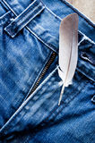 Feather on jeans Royalty Free Stock Photo
