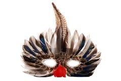 Feather Mardi Gras Mask Stock Photo