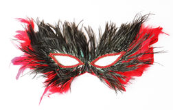 Feather mask royalty free stock photo
