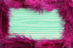 Feather. On a mint wooden table Royalty Free Stock Images