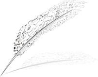Feather, music, Stock Photos